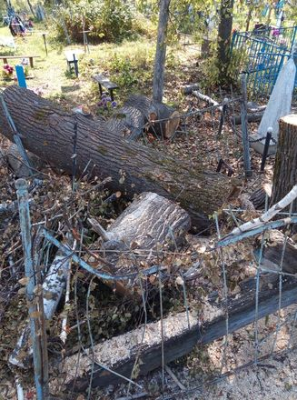 Соцсети: кресты и надгробья оказались разрушенными после благоустройства на кладбище в Лукояновском районе - фото 5