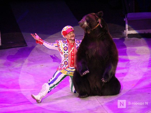 Чудеса «Трансформации» и медвежья кадриль: премьера циркового шоу Гии Эрадзе «БУРЛЕСК» состоялась в Нижнем Новгороде - фото 30
