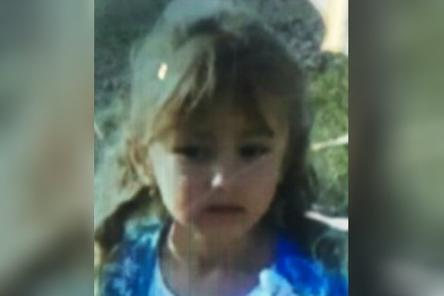 Волонтеры из Подмосковья, Рязани и Екатеринбурга отправились на поиски пятилетней девочки, пропавшей в Вознесенском районе
