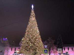 Нижний Новгород украсят к Новому году за 50 млн рублей