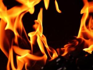 Высокая пожароопасность лесов ожидается в Нижегородской области