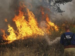 Горящая трава угрожает домам в деревне Турбенево Вачского района