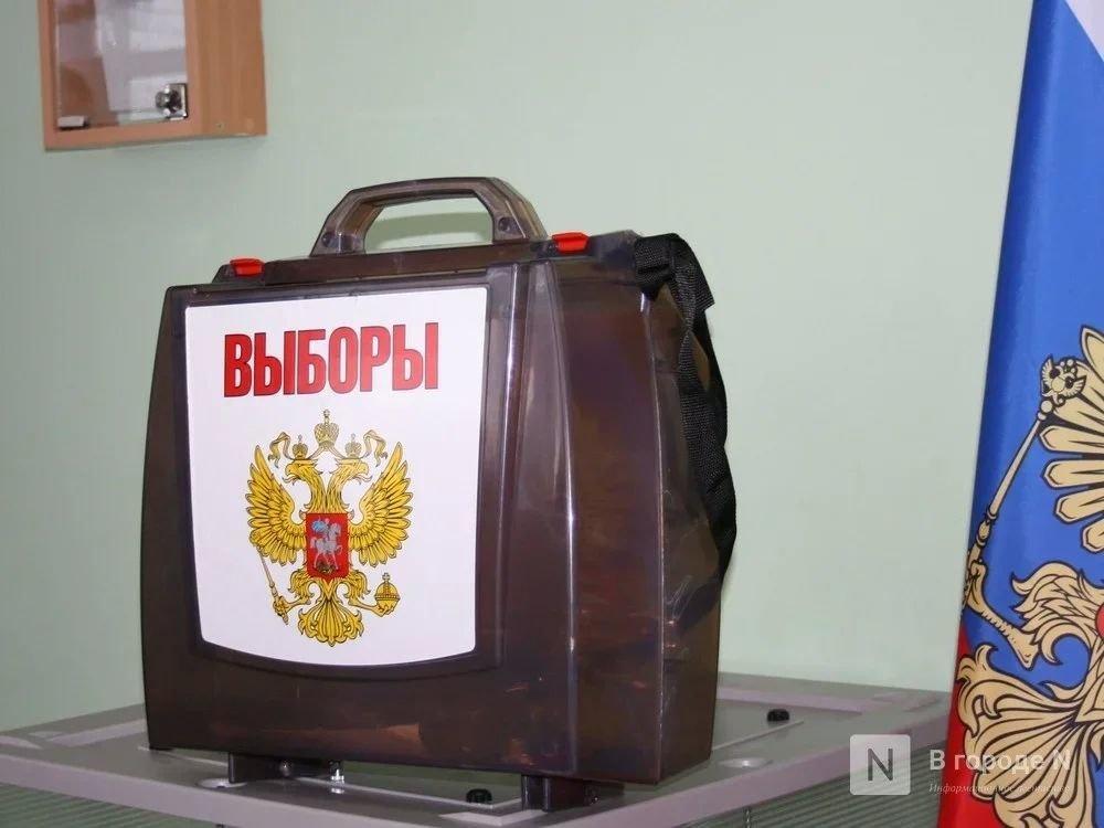 Председателем избиркома Нижегородской области стала Маргарита Красилевская - фото 1