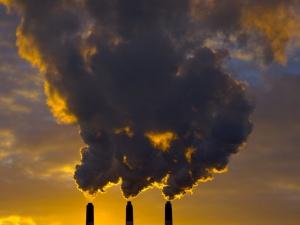 Greenpeace подвел итоги исследования воздуха в Нижнем Новгороде