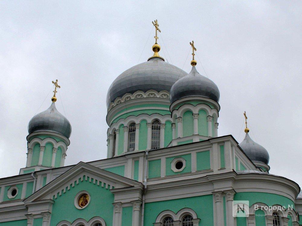 Нижегородская «Серафимова земля» появилась в интернете - фото 1