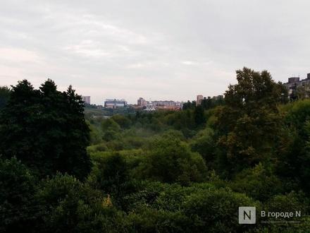 Проект озеленения Нижнего Новгорода оценен в 10 млн рублей