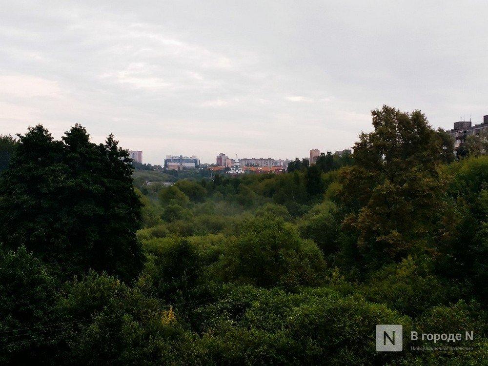 Проект озеленения Нижнего Новгорода оценен в 10 млн рублей - фото 1
