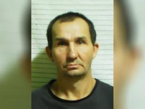 Сбежавший восемь месяцев назад заключенный Салахов пойман в Кстовском районе