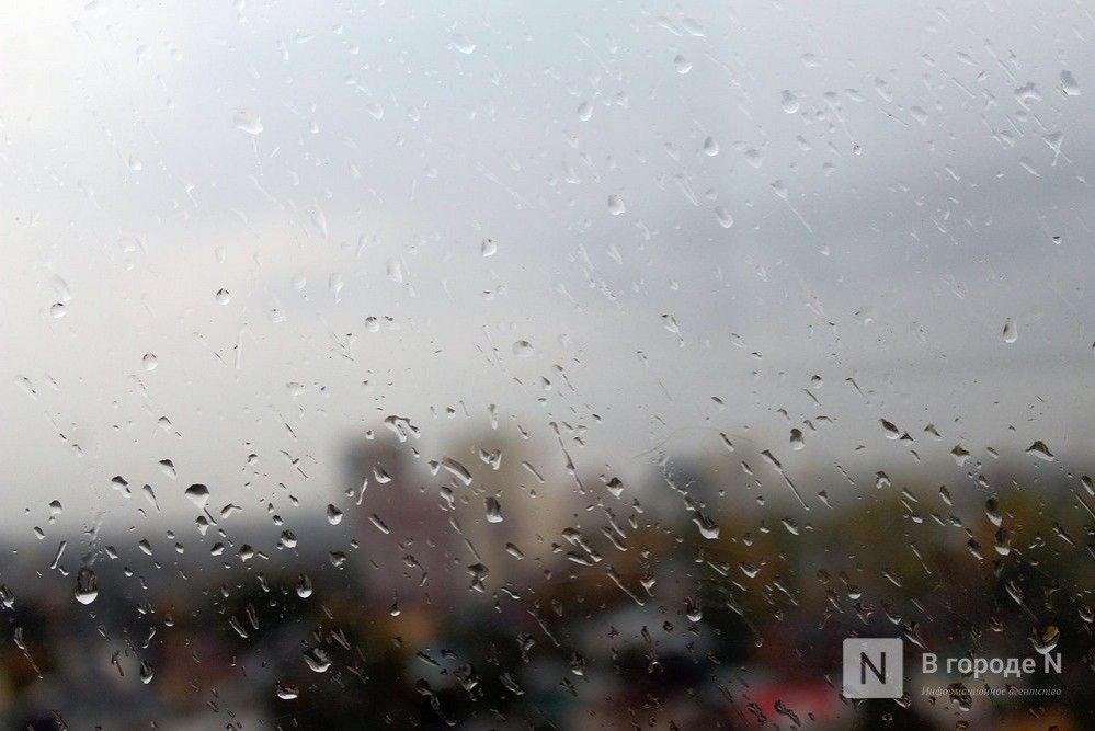 Потепление до +7°С и дожди принесет нижегородцам наступившая неделя - фото 1