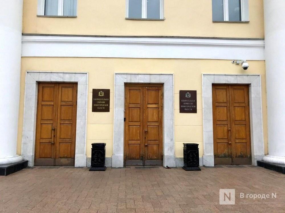 Депутаты профильного комитета нижегородского Законодательного собрания поддержали предоставление дополнительных гарантий сиротам - фото 1
