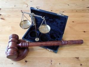 Мосгорсуд признал законным штраф Волочкой за поездку в Дивеево