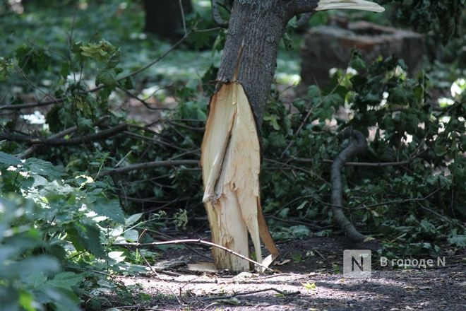 Конфликт на костях: за и против строительства храма на улице Родионова - фото 40
