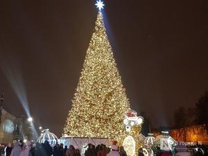 Стало известно, где в Нижнем Новгороде установят новогодние елки
