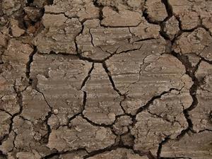 Власти ищут подрядчика для ликвидации провала грунта на Зеленском съезде