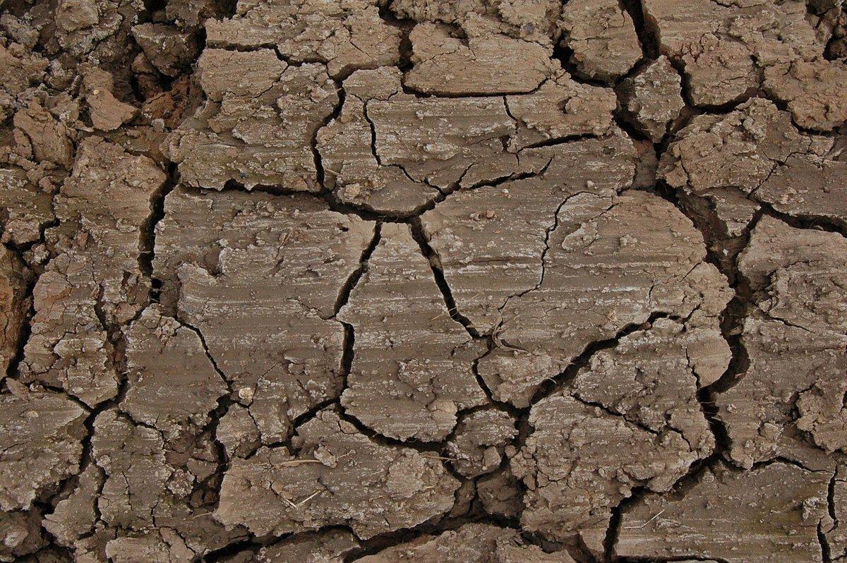 Власти ищут подрядчика для ликвидации провала грунта на Зеленском съезде - фото 1