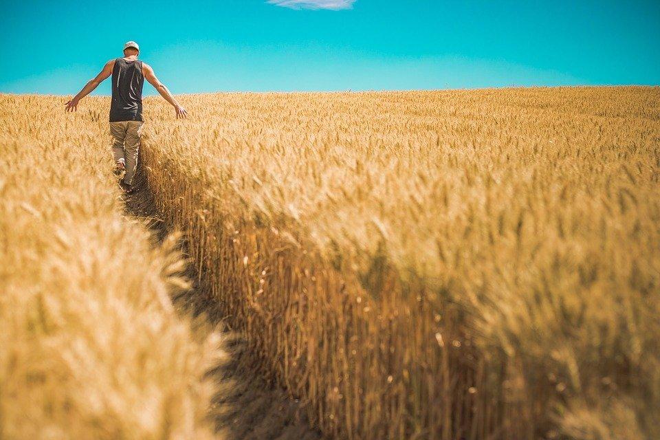 175 молодых нижегородских аграриев получают ежемесячные выплаты - фото 1