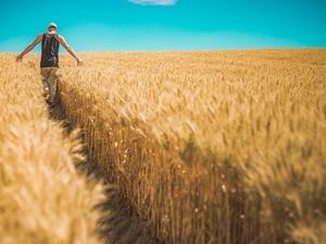 175 молодых нижегородских аграриев получают ежемесячные выплаты