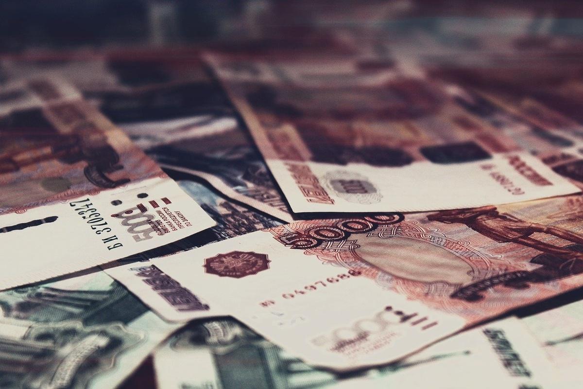 Более 90 млн рублей льготных займов получили предприниматели Нижегородской области - фото 1