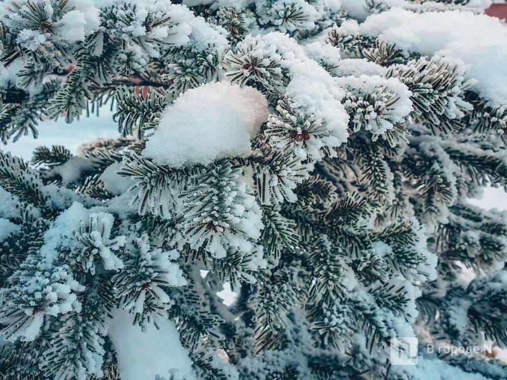 Морозы до 36°С ожидаются в Нижегородской области 18 января  - фото 1